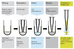 sample preparation workflow using the AC Extraction plate